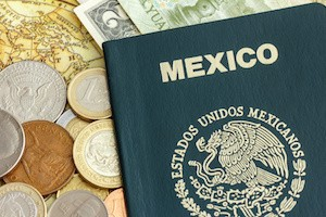 Mexican Passport for picture requirements